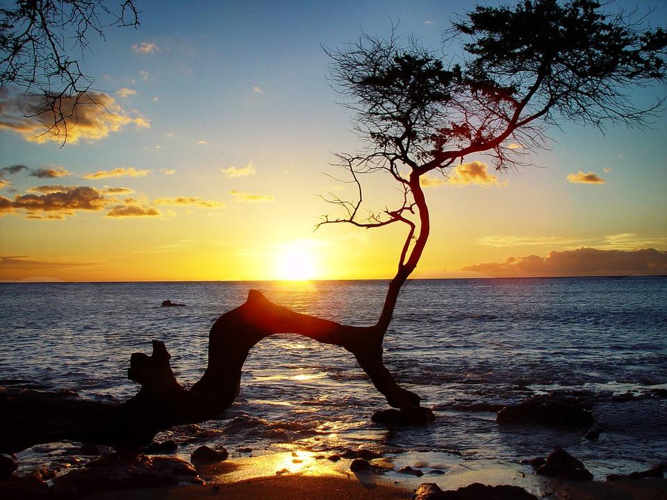 hawaii-700231_960_720