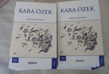 Қазақ романы түрік тілінде жарық көрді